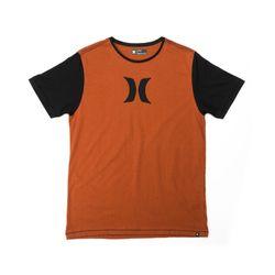 Camiseta-Hurley-Especial-Icon-Vinho