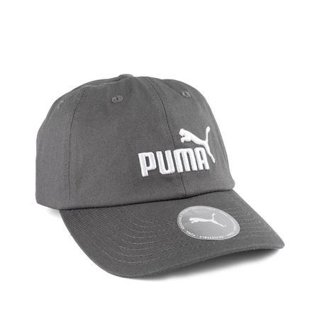 Bone-Puma-Ess-Cinza-022416-02